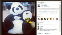 Penguin and Panda are friends!
